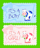 It,s a boy, it's a girl. Vector illustration depicting two backgrounds to celebrate the birth of a baby or child, decorated with colored flakes and cows Royalty Free Stock Photos