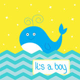 It's a boy  shower card with cute cartoon whale and sparkles. Royalty Free Stock Photography