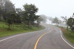 s buktade vägen som leder in i berget i den kalla dimmiga morgondagen royaltyfri fotografi