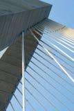 Конспект канатного моста Чарлстона S.C. Стоковые Фотографии RF