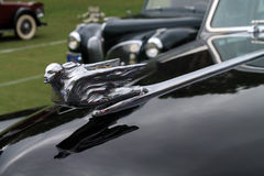 1940s cadillac fleetwood hood detail Stock Image