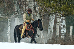 It's a cold workday. Cowboy working on a very cold day Royalty Free Stock Image
