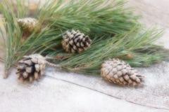 ` S, composición del Año Nuevo de Navidad una rama del pino con los conos del pino en un viejo fondo de madera Fotografía de archivo