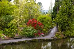 ` S Crystal Springs Rhododendron Garden de Portland Photo libre de droits