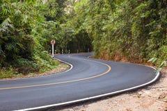 S curvó la opinión de carretera de asfalto en el bosque Imagen de archivo