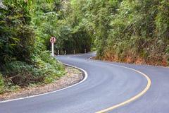 S curvó la opinión de carretera de asfalto en el bosque Foto de archivo