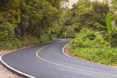 S curved asphalt road view in the forest Stock Images