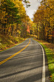 S-Curved Road On Skyline Drive Royalty Free Stock Images