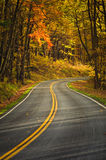 S-Curved Road On Skyline Drive Stock Image