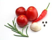 `S de Tomatoe y `s de la especia Imágenes de archivo libres de regalías