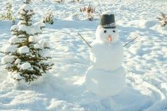 ` S del Año Nuevo y símbolo de la Navidad de un árbol de abeto del día de fiesta y de un snowma Fotografía de archivo