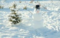 ` S del Año Nuevo y símbolo de la Navidad de un árbol de abeto del día de fiesta y de un snowma Imagen de archivo libre de regalías