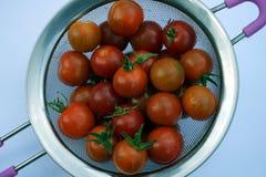 ` S del tomate de cereza lavado fotos de archivo libres de regalías