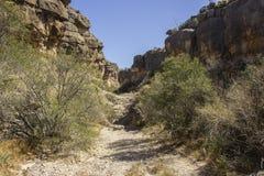 ` S Den Canyon do diabo imagem de stock royalty free