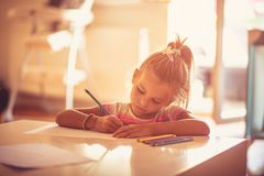 She`s a diligent student at school and at home. stock images