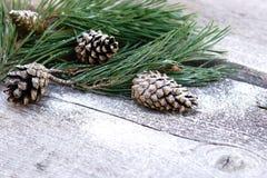 ` S do ano novo, composição do xmas um ramo do pinho com cones do pinho em um fundo de madeira velho Fotos de Stock