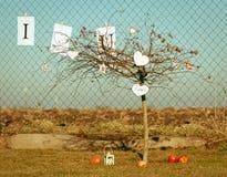 s drzewa valentine Obraz Royalty Free