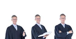 Sędzia kolekcja Obrazy Stock
