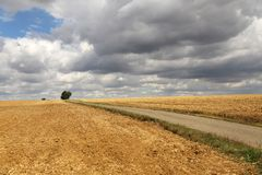 That`s the end of the summer ... / Harvested wheat field Royalty Free Stock Photography
