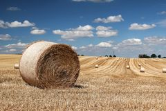 That`s the end of the summer ... / Harvested wheat field Royalty Free Stock Photo