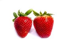 ` S Erdbeere mit zwei Rottönen, das versucht sich zu verstecken Lizenzfreie Stockfotos