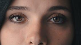 ` S för kvinnan för brunt för skönhetmakronärbilden synar att blinka stock video