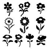 S floral Fotos de archivo libres de regalías