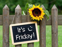 It`s Friday - chalkboard with sunflower and text. In the garden stock image