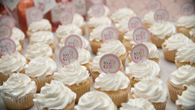 `It`s A Girl` Cupcakes. Assortment of `Its A Girl` Titled Cupcakes Royalty Free Stock Images