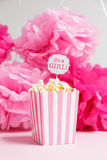 It`s a girl sign in a popcorn bag at the baby shower party.  Pap Stock Photography