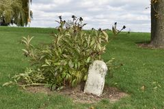 1800`s gravestone in a country graveyard stock photography