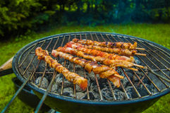 It's grilling time! Royalty Free Stock Photos