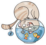 Сats horoscope - Pisces. Comic horoscope with cats: zodiac sign Pisces Royalty Free Stock Photos