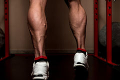 That's How You Train Legs Calves Royalty Free Stock Photo