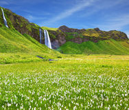 S Iceland in July. Warm day Stock Image