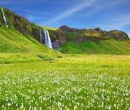 S Islanda a luglio Giorno caldo Immagine Stock