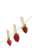 s-jordgubbewhite Arkivfoto
