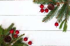 ` S, jultema för nytt år Grön gran förgrena sig med kottar, dekorativa bär på vit träbakgrund Arkivfoton