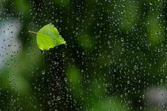 That's just a tear left on my window Royalty Free Stock Photo