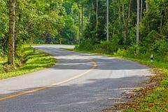 S koszowa droga w lesie Zdjęcie Stock