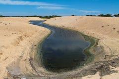 S kształtujący basen na pogodnej plaży Zdjęcie Royalty Free