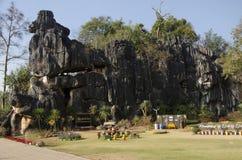 ` S Kunming Suan Hin Pha Ngam oder Thailands an Naturschutzgebiet Phu Luang in Loei, Thailand stockbilder