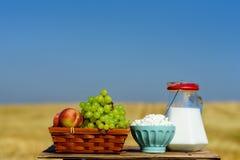 S?mbolos do feriado judaico - Shavuot Primeiro habikkurim dos frutos no queijo e no leite hebreus, brancos na tabela de madeira imagens de stock royalty free