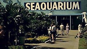 1970s Miami Seaquarium. Miami, Florida, United States - Circa 1978: Entrance gate with tourists on holiday at Miami Seaquarium in 70`s. The historical United stock video footage
