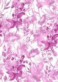 S?ml?s modell f?r vattenf?rg, bakgrund med en blom- modell H?rliga tappningteckningar av v?xter, blommor, pilfilial, b?r vektor illustrationer