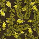 S?ml?s stilfull modell med maskrosor dekorativt blom- f?r bakgrund stock illustrationer