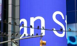 ` S Mogran Stanley elektronischer Schirm Stockfoto