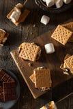 S'mores appiccicaticcio casalingo con cioccolato Immagine Stock