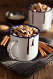 S`mores hot chocolate mini marshmallows cinnamon winter drink Royalty Free Stock Image