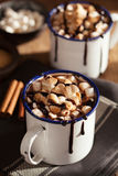 S`mores hot chocolate mini marshmallows cinnamon winter drink Royalty Free Stock Images